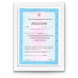 Лицензия на осуществление образовательной деятельности №77080 от 24 мая 2017 г. Серия: 50Л01 №0008960